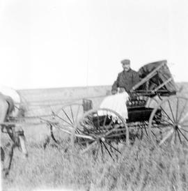 Alfred Estlin in carriage near Melita, Manitoba