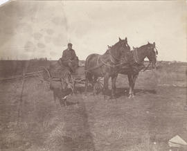 John Graham Graham in a horse-drawn wagon