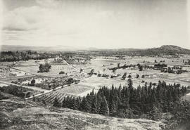 View from Mount Tolmie to Mount Douglas, 1908