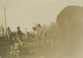 Clearing land on Tyndall Avenue, 1916