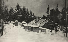 Whitehead farm, greenhouses and beehives in the snow