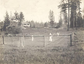 A game of tennis, Prospect Lake