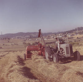 Baling hay on the Lavender family farm, Judah Street