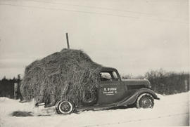 Bill Ruby taking hay to stock, winter 1938