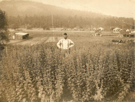 John Woods standing in larkspur at his home on Ash Road