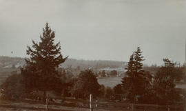 Cadboro Bay [from Beale family home]