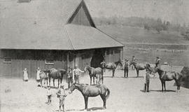 "Broadmead farm with the stallion ""Broadmead"" in the foreground held by Jack Bothwell, 1893"