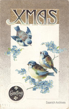 "Christmas card with birds, message ""Xmas Greeting"""