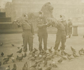 "Leslie ""Buster"" Underwood, Barney Hagar, and Ernie Underwood with pigeons in Trafalgar ..."