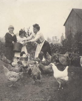 Charles, Maude and May Aitkens feeding chickens on Aitkens farm in Gordon Head
