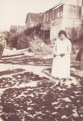 First Nations woman drying seaweed, 1904