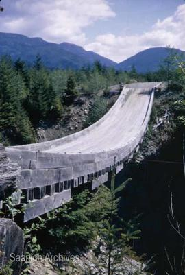 Bedsprings suspension bridge between Shawnigan Lake and Port Renfrew