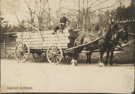 George McMorran Sr. with load of shingles for his home on Pear Street and Cedar Hill Road