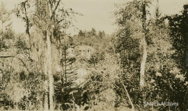 Hall home, 1144 Loenholm Road, as seen through the woods, 1923