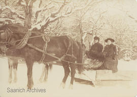 Horse and sleigh, Beacon Hill Park in the snow, early 1900s