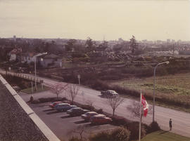 View of Vernon Avenue from roof of Municipal Hall