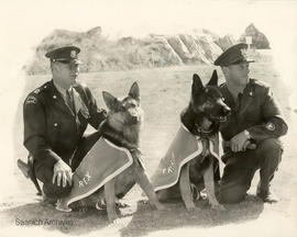 Saanich Police Dog section, Jim White with Rex and G. Barr with Prince, 1967
