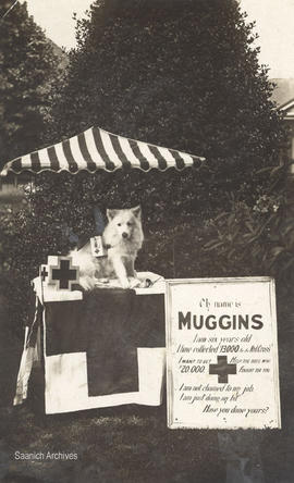 Postcard of Muggins at his portable collection stand for the Red Cross
