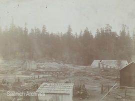 Construction of the Beaver Lake water works