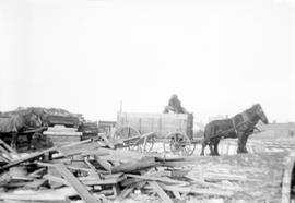 Horse and cart making delivery at grain elevator on the Prairies