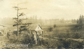 Gillie family farm at Strawberry Vale just after purchase, ca. 1905