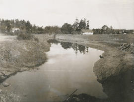 Colquitz Creek, photo taken from Marigold bridge facing north-west