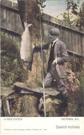 "Colourized postcard of a man with fish, captioned ""A nice catch, Victoria, B.C."""