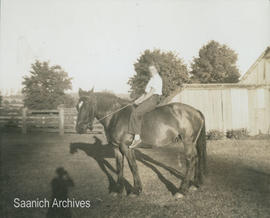 [Muriel Comber on horseback at the Holloway farm?]
